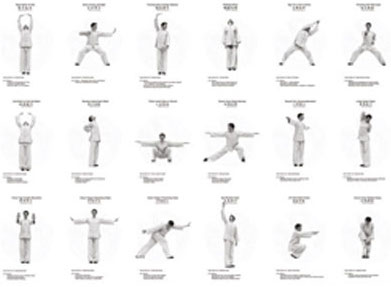 Qigong Exercises are many and varied