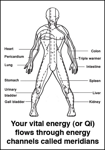 Vital energy or Qi flows through the meridians of the body